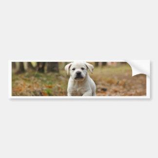Het puppy van de labrador bumpersticker