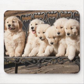 Het Puppy van het golden retriever Muismat