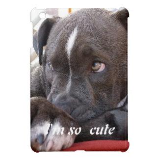 Het Puppy van Pitbull van het baby iPad Mini Case