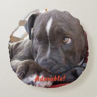 Het Puppy van Pitbull van het baby Rond Kussen
