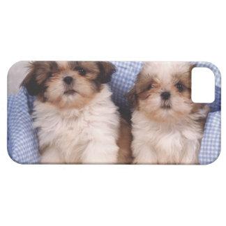 Het puppy van Tzu van Shih onder een Barely There iPhone 5 Hoesje
