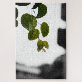 Het Raadsel van bladeren op Zwart-wit Legpuzzel
