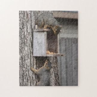 Het raadsel van de eekhoorn: Twee Eekhoorns Puzzel