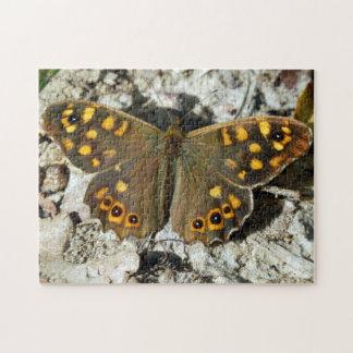 Het Raadsel van de Foto van de Vlinder van Puzzel