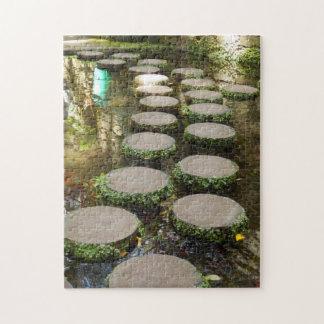 Het Raadsel van de Foto van springplanken met de Foto Puzzels
