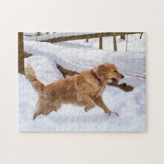 Het Raadsel van de Hond van het golden retriever Puzzel