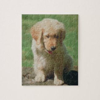 Het Raadsel van de Hond van het Puppy van het gold Legpuzzel