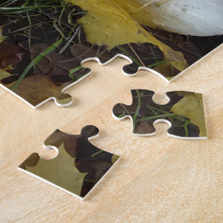 Het raadsel van de paddestoel puzzel