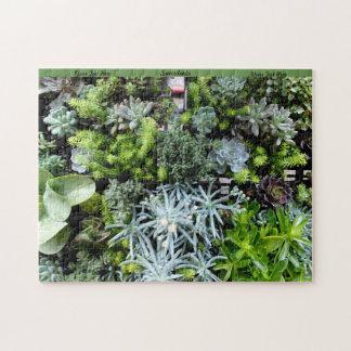 Het Raadsel van Succulents personaliseert het Legpuzzel
