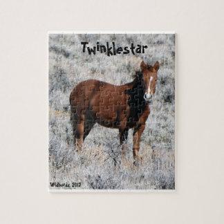 Het Raadsel van Twinklestar Legpuzzel