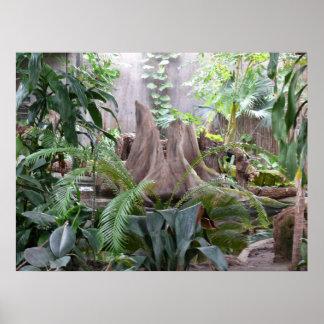 Het regenwoud print