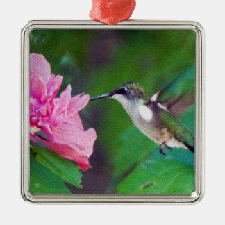 Het robijnrode Ornament van de Kolibrie Throated