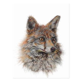 het rode art. van het vosgezicht briefkaart