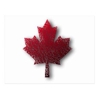 Het rode Canadese Blad van de Esdoorn Briefkaart