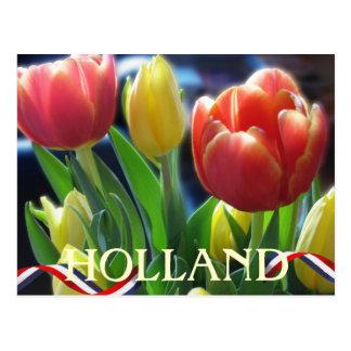 Het rode en Gele Briefkaart van Holland van de