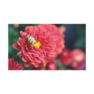 Het rode Insect van het Insect van de Kever van de Canvas Print