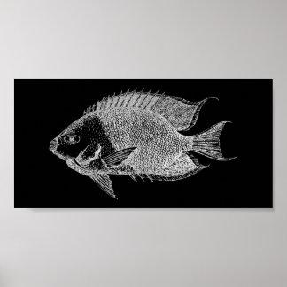 Het rode Zee Oceaan Zwarte Zilveren Grijze Aqua Poster
