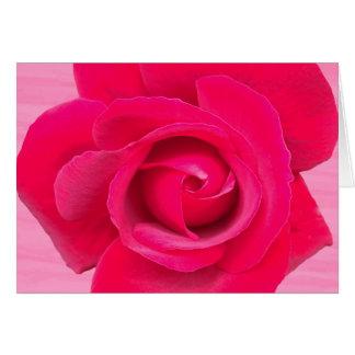 Het romantische Rode Roze nam toe Briefkaarten 0