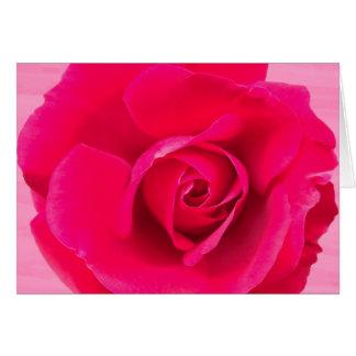 Het romantische Rode Roze nam v2 toe Kaart