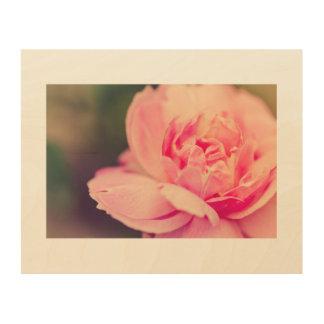 Het romantische roze nam toe houten canvas prints