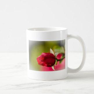 Het rood nam dicht op ontwerp toe koffiemok