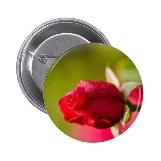 Het rood nam dicht op ontwerp toe ronde button 5,7 cm