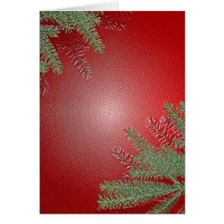 Het Rood van de Poinsettia van Kerstmis