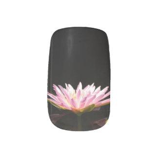 Het roze Art. van de Spijker van Lotus Waterlily Minx Nail Art