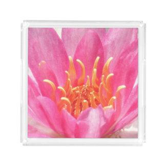 Het roze Dienblad van het Parfum van het Close-up