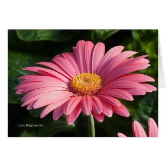 Het roze is voor Liefde Kaart