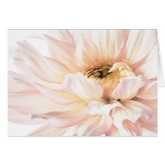 Het roze Kunstwerk van de Dahlia - Sleutelwoorden: Wenskaart