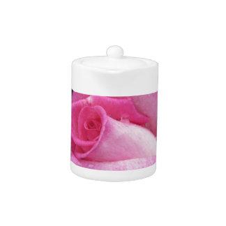 Het roze nam bloemen met waterdruppeltjes in de