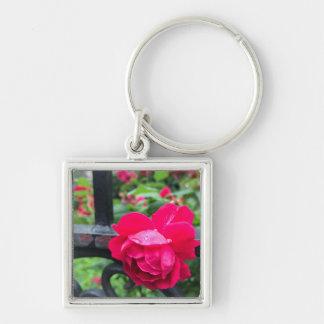 Het roze nam de Foto van de Poort van de Tuin van Sleutelhanger