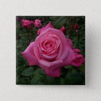 Het roze nam Knoop toe Vierkante Button 5,1 Cm