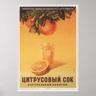 Het Sap van de citrusvrucht Poster