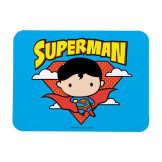 Het Schild en de Naam van de Stip van de Superman Magneten
