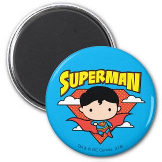 Het Schild en de Naam van de Stip van de Superman Ronde Magneet 5,7 Cm