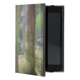 Het schilderachtig Park van de Staat van het iPad Mini Covers