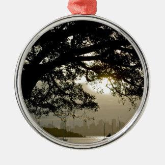 Het schilderachtig uitzicht van de Horizon van Zilverkleurig Rond Ornament