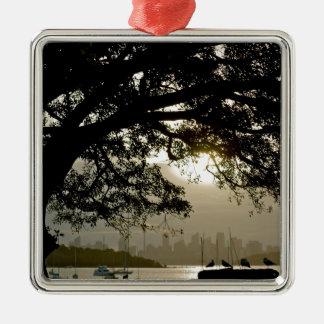 Het schilderachtig uitzicht van de Horizon van Zilverkleurig Vierkant Ornament