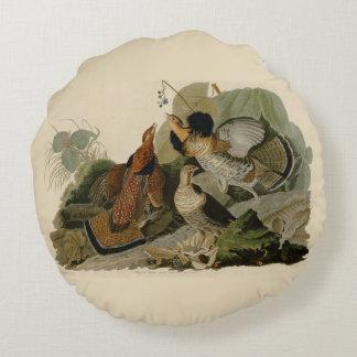 Het Schilderen van Audubon van een trio van Hoen Rond Kussen