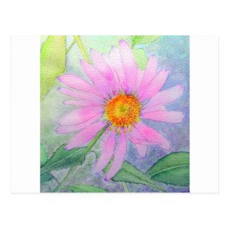 Het schilderen van de Bloem van Echinacea Briefkaart