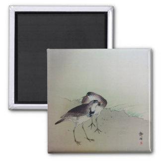 Het schilderen van Zen plevieren Magneet