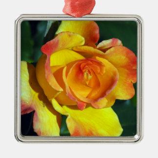 Het schitterende Gouden Gloeien nam toe Zilverkleurig Vierkant Ornament