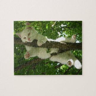 Het schitterende Witte Hangen van de Kat uit in Foto Puzzels