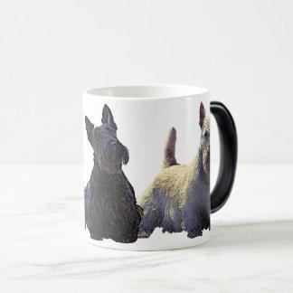 Het Schotse zwarte/wheaten trio van Terrier, Magische Mok
