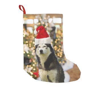 Het Siberische Schor Pet van de Kerstboom Kleine Kerstsok