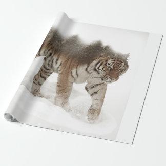 Het Siberische tijger-tijger-dubbele Inpakpapier
