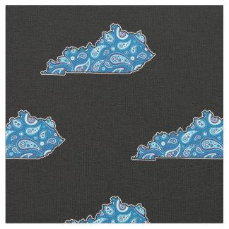 Het Silhouet Blauw Paisley van de Staat van Stof