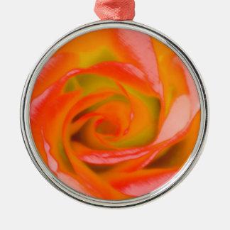 Het sinaasappel nam Close-up toe Zilverkleurig Rond Ornament